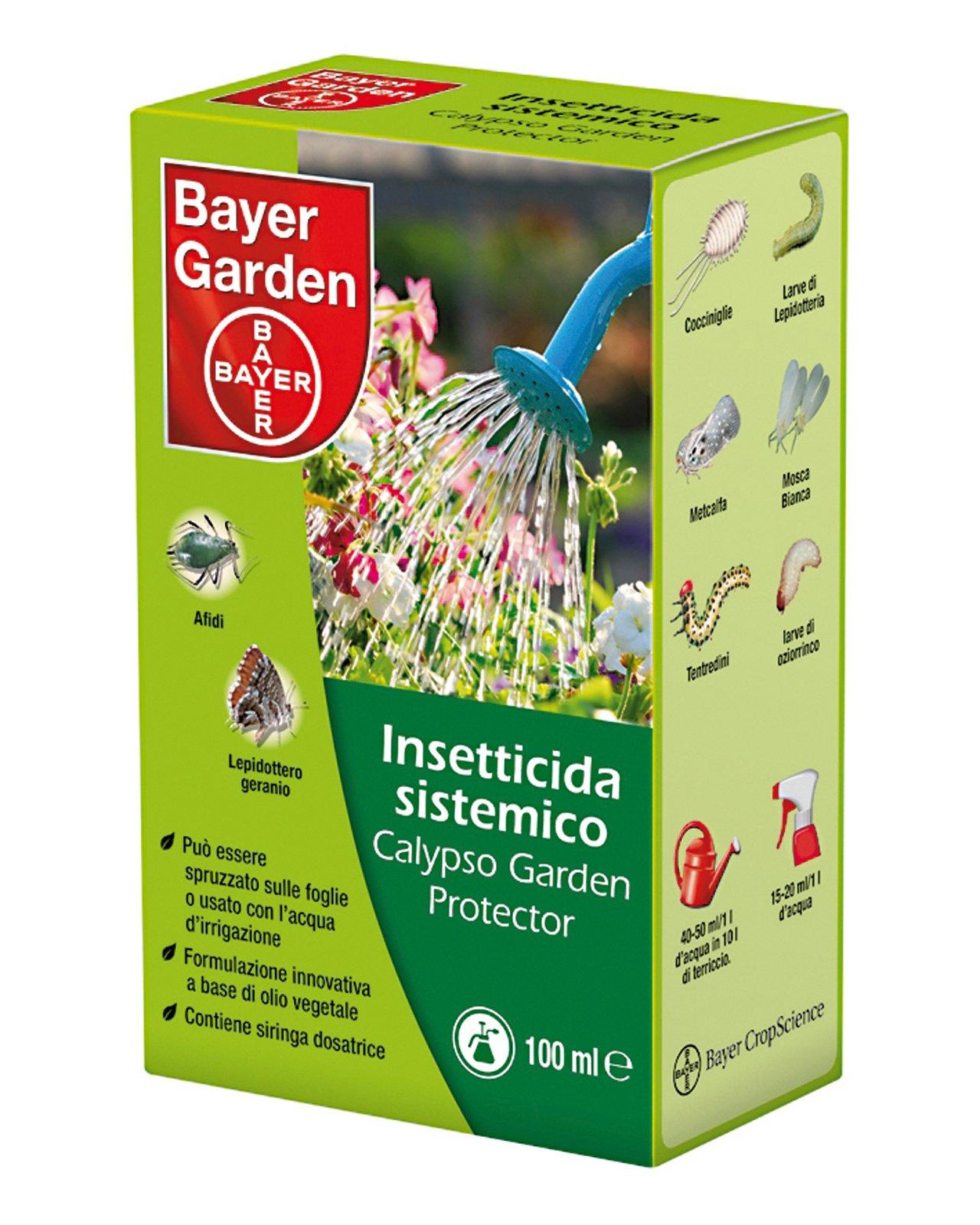Gerani moltiplicarli per talea cose di casa for Bayer garden