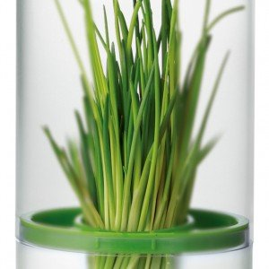 Il contenitore per erbe aromatiche della linea Sense di Tescoma è in plastica. Pratico e resistente è ideale per mantenere in frigorifero le erbe aromatiche fresche e verdi più a lungo. Prezzo 9.90 euro. www.tescomaonline.com