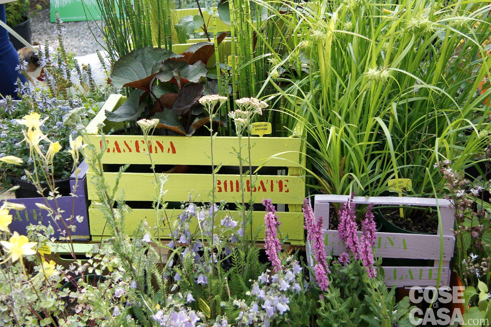 Idee da copiare cose di casa for Idee per creare un giardino