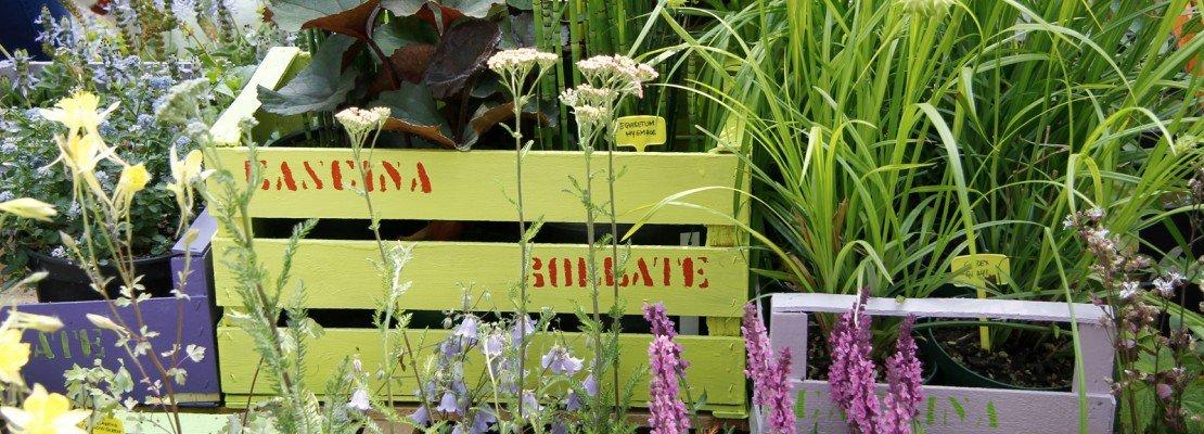 Idee da copiare cose di casa - Idee per giardini di casa ...