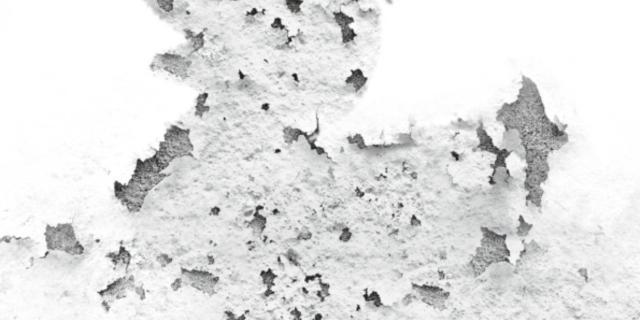 Umidità nei muri, come riconoscerla