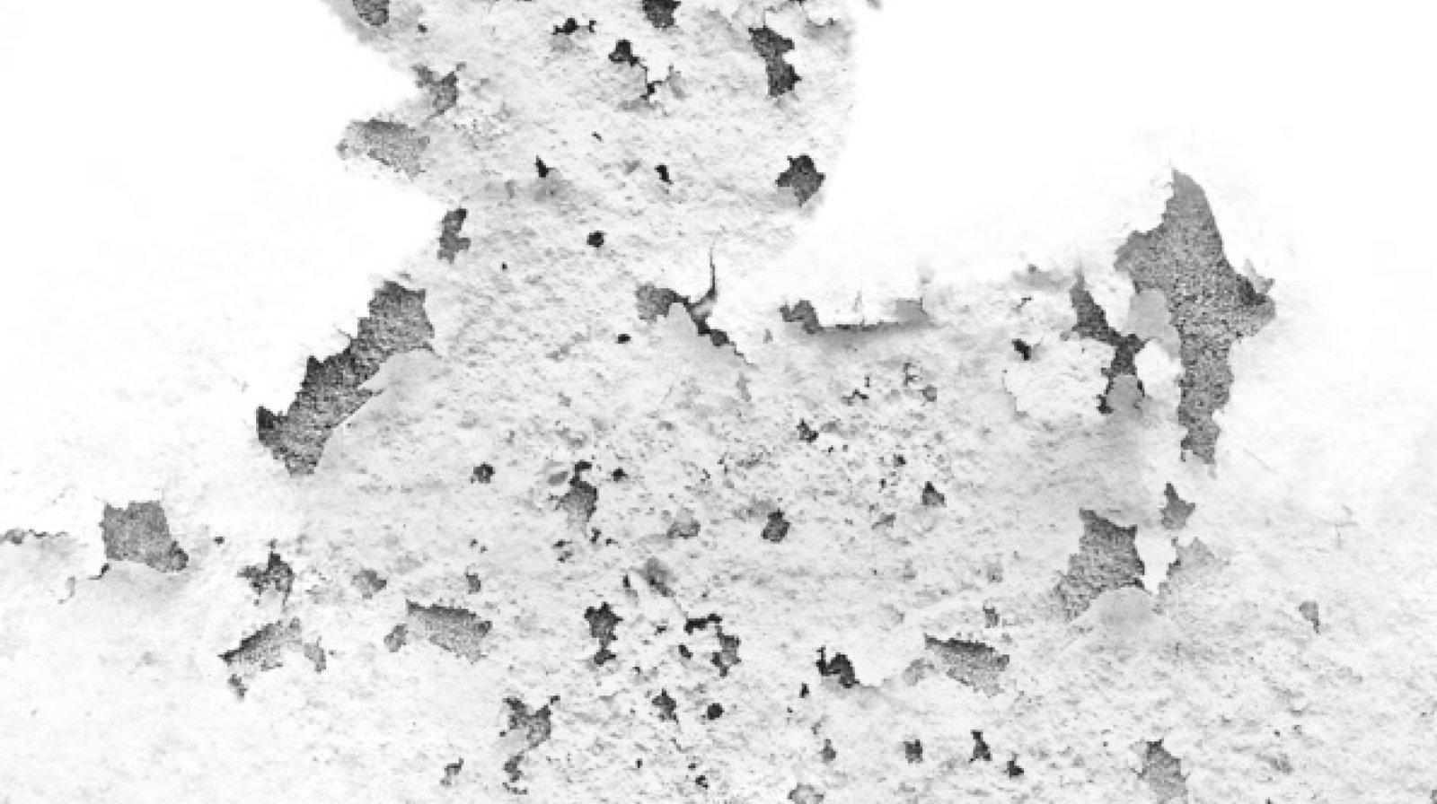 Umidit nei muri come riconoscerla cose di casa - Come ridurre l umidita in casa ...