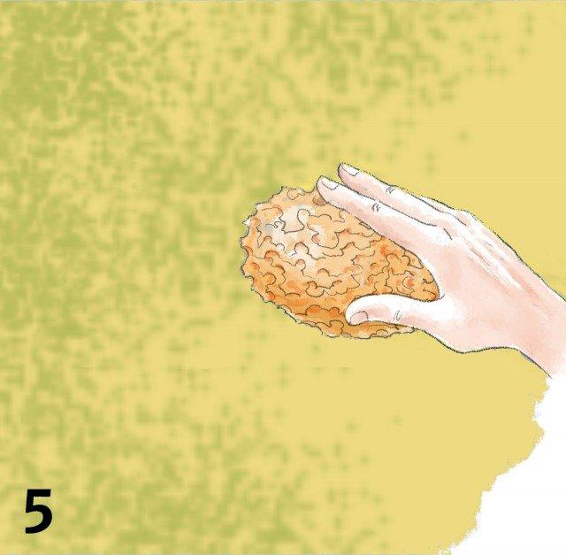 spugnatura6