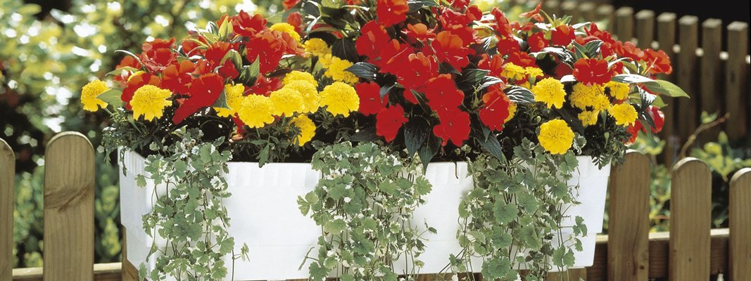 Impianto Illuminazione Balcone: Impianto illuminazione balcone esterna giardini bolzano.