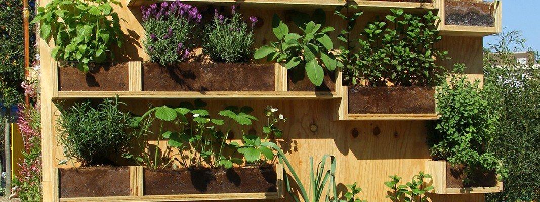 una parete di aromatiche in balcone cose di casa