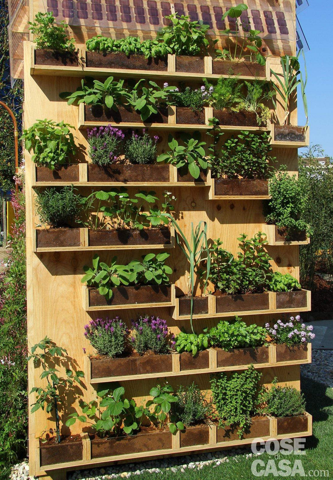 Una parete di aromatiche in balcone cose di casa - Porta piante da esterno ...
