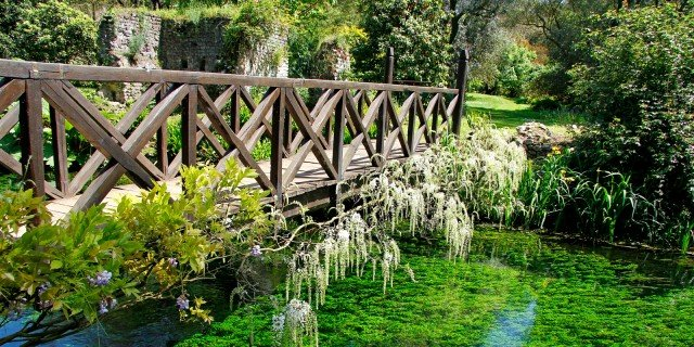 Giardino di Ninfa: alla scoperta delle piante