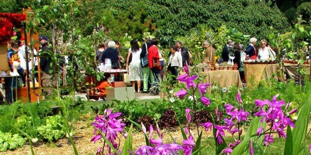 21-22 settembre: un weekend ricco di mostre-mercato di giardinaggio