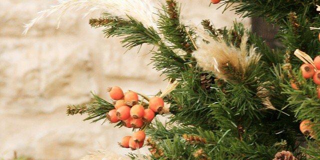 Addobbare un albero di Natale perfetto. Con i corsi di Viridea