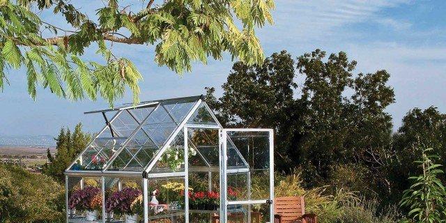 Proteggere le piante dal freddo: serre e serrette - Cose di Casa