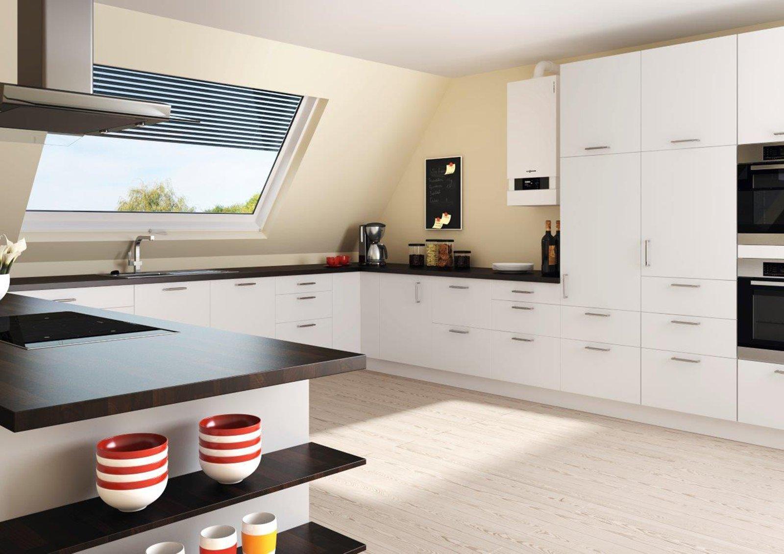 Una nuova caldaia incentivi e spese cose di casa for Asticots dans la cuisine