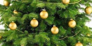 Albero di Natale: bello fino all'Epifania