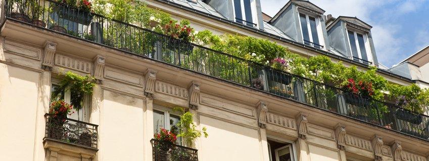 balcone: risolvere altri 4 problemi comuni - cose di casa - Piante Sempreverdi Da Vaso Balcone