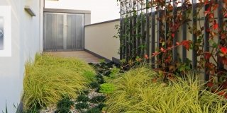 Giardino pensile: oasi verdi in città