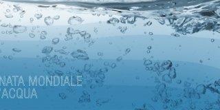 Giornata mondiale dell'acqua 2014