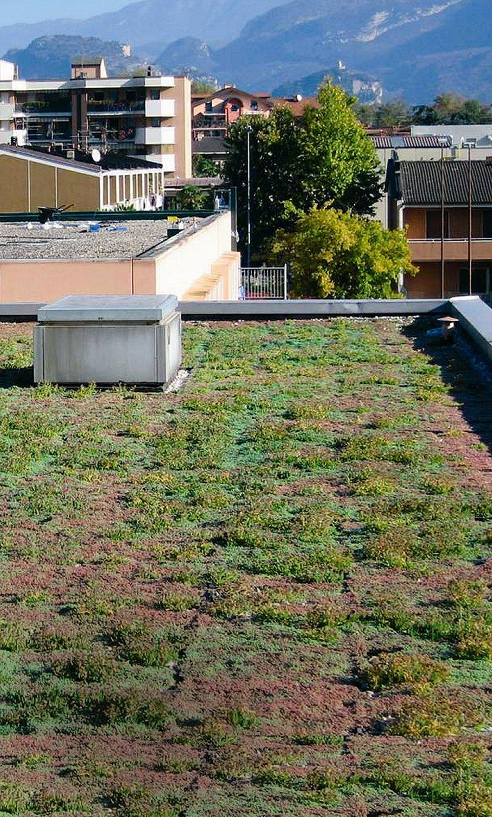 Copertura ventilata per ambienti sottotetto ben isolati da for Piani casa linea tetto singolo