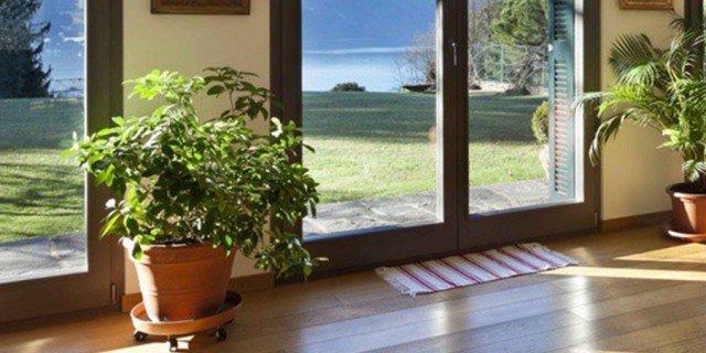 Piante in casa: acqua e ombra devono essere garantite