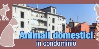 Condominio: nessun divieto per gli animali domestici