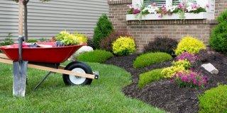Lavori in giardino: al momento giusto