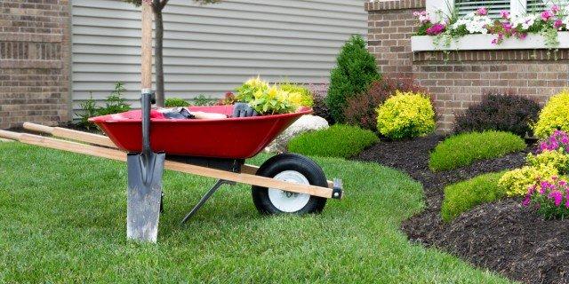Temperature di germinazione cose di casa - Lavori in giardino ...