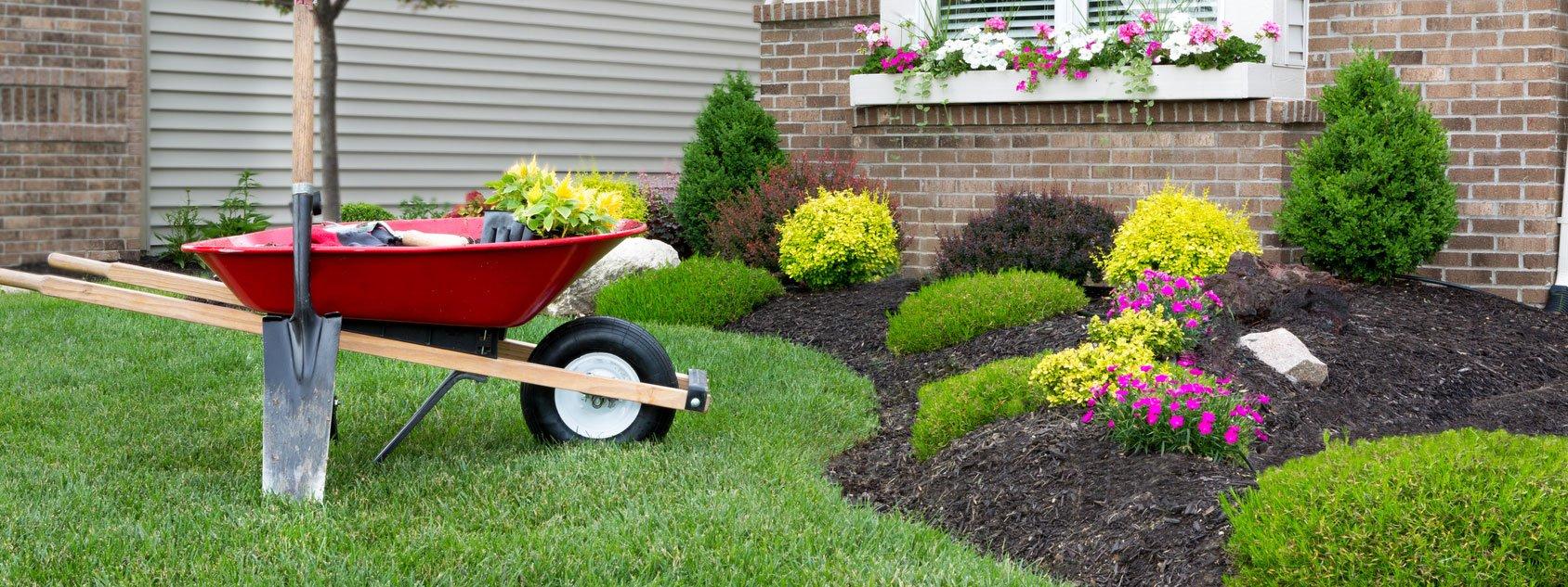 Lavori in giardino al momento giusto cose di casa for Piante sempreverdi da aiuola