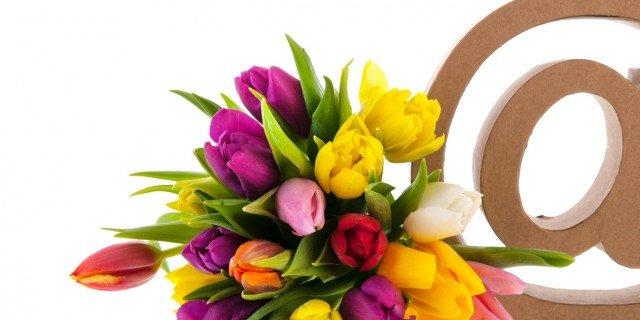 cataloghi on line piante e fiori arrivano a casa cose