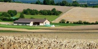 IMU terreni agricoli: pagamento in scadenza il 26 gennaio 2015