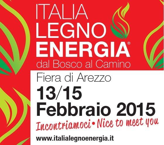 Italia legno energia dal bosco al camino prima edizione for Italia legno energia