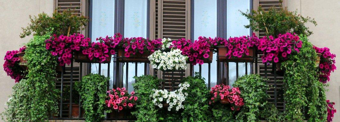 Irrifarma - Irrigazione Automatica dei Vasi e dei Balconi