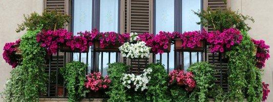 Balcone e terrazzo arredamento cose di casa - Irrigazione balcone ...