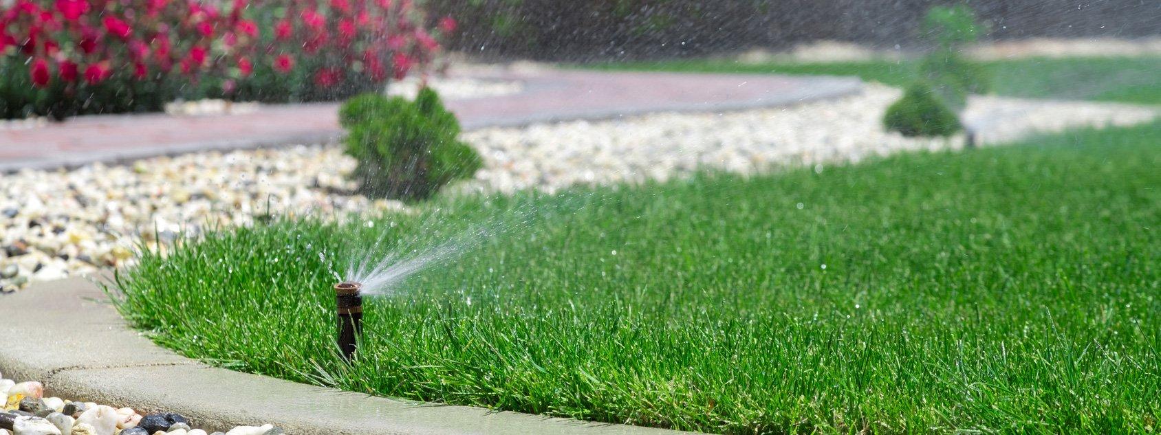 Irrigare bene il prato cose di casa for Irrigazione prato fai da te