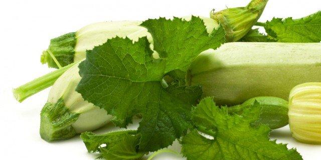 Le cure estive per le zucchine