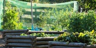 protezioni per orto
