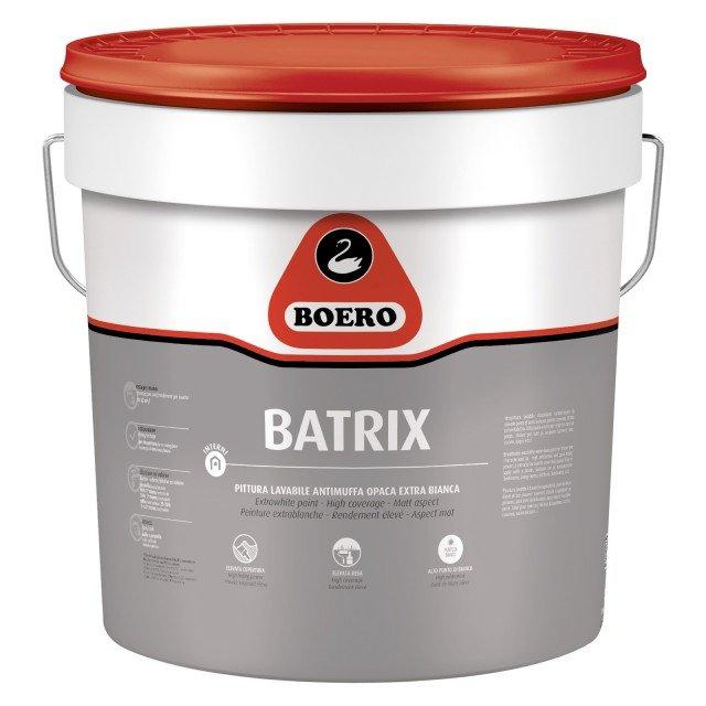 3boero-batrix-bagnoinmansarda