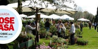 Mostre mercato di giardinaggio: il calendario
