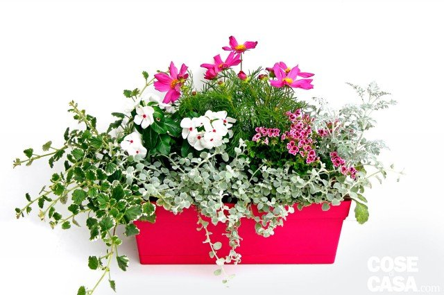 Il vaso fiorito per il balcone cose di casa