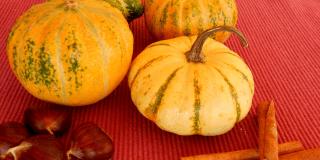Zucche ornamentali per Halloween