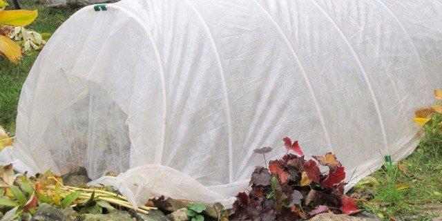 Le protezioni invernali nell'orto