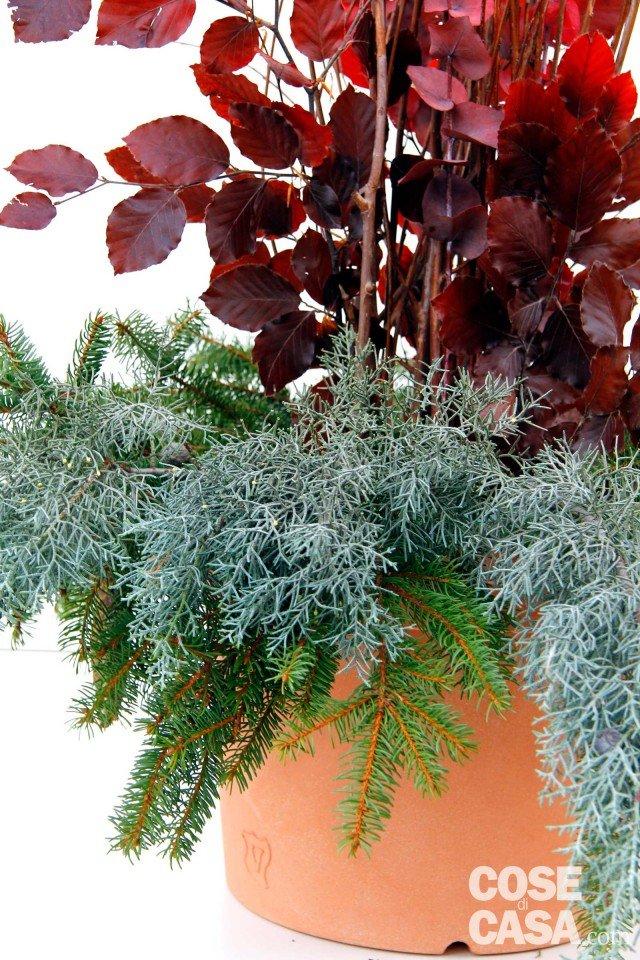 La composizione natalizia per decorare l ingresso cose for Raccordo casa verticale