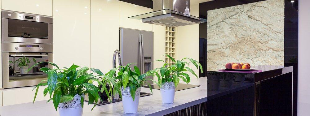 In casa quale luce per le nostre piante cose di casa - Piante aromatiche in casa ...