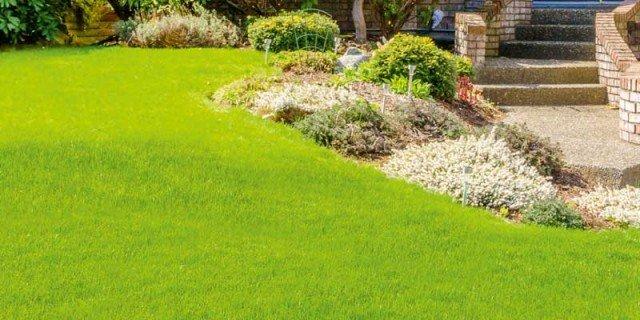 Giardino aiuole e green arredamento cose di casa for Arredamento prato