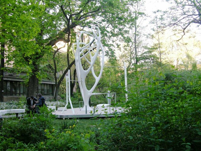 L'albero del fitness tra gli alberi dell'Orto Botanico