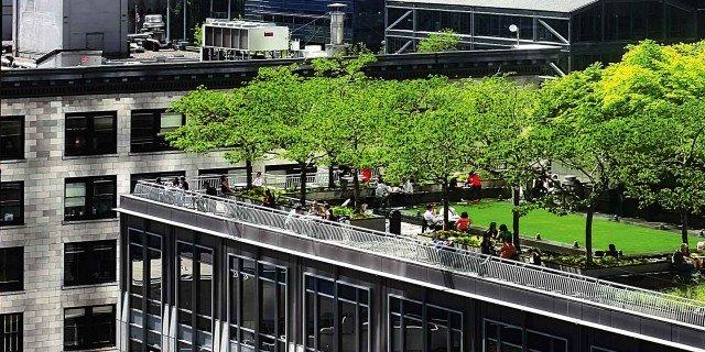 Il tetto giardino: solo vantaggi