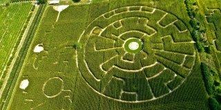 Il labirinto nel mais