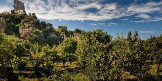 Parchi da visitare in Sicilia e Sardegna