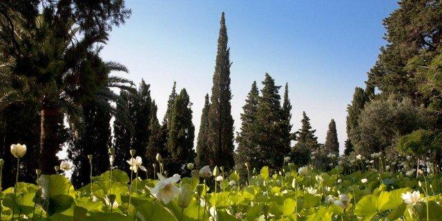 I parchi pi belli del nord d italia da visitare durante for Giardini villa della pergola