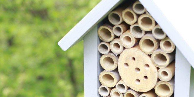 Saper fare: l'hotel per gli insetti utili
