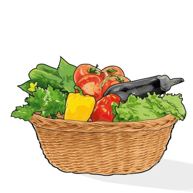 4. Al momento della raccolta gli ortaggi devono essere posti in un contenitore spazioso, non ammassati tra di loro, ben ripuliti dalla terra e tenuti all'ombra.