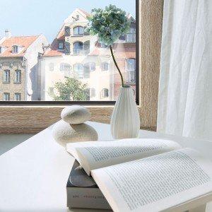 Attraverso la nuova tecnologia I-tec Core, la finestra in legno-alluminio HF410 di Internorm (www.internorm.com) puòavere, oltre ad altri plus, anche il profilo a ridotto spessore che favorisce la superficie vetrata.