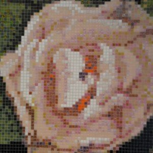 Springrose Nero di Bisazza